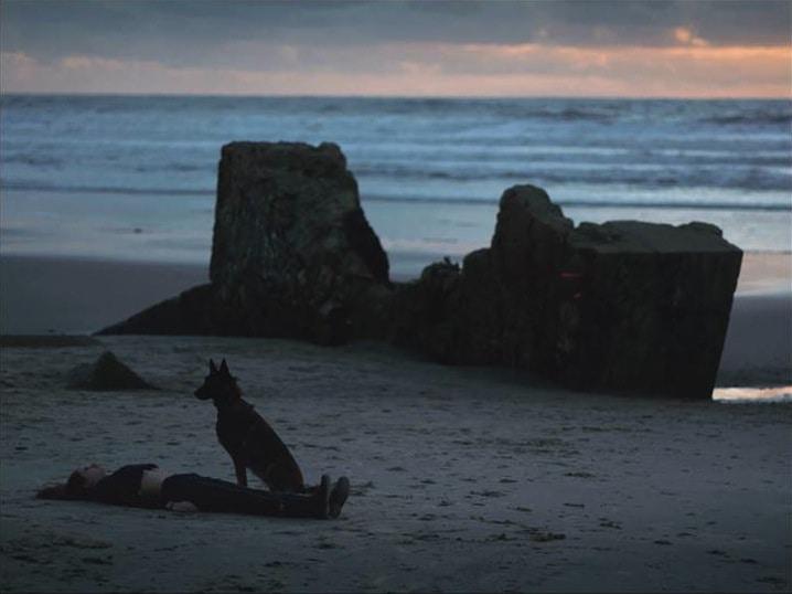 Lucas HÉBERLÉ #CV #Pro #Work Les Oiseaux Tonnerre Montage Son Fiction Court-métrage Cinéma