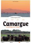 Camargue, la poétique de l'étang
